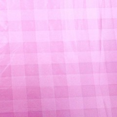WN-0009 nylon printed cloth in the grid